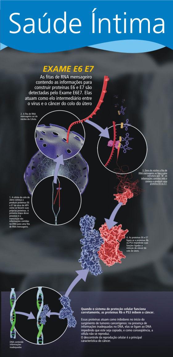 Painel explicativo sobre os mecanismos do vírus HPV iniciando um processo cancerígeno