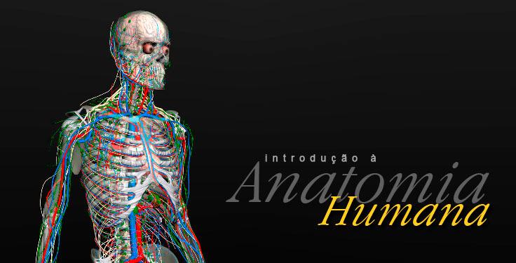 software anatomia human 3d