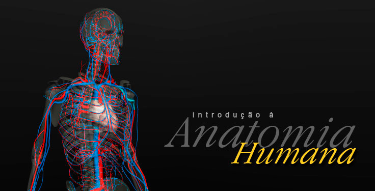 software anatomia humana 3d